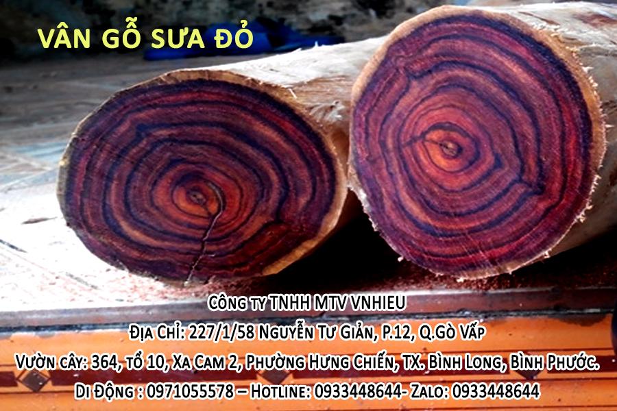 vân gỗ sưa đỏ